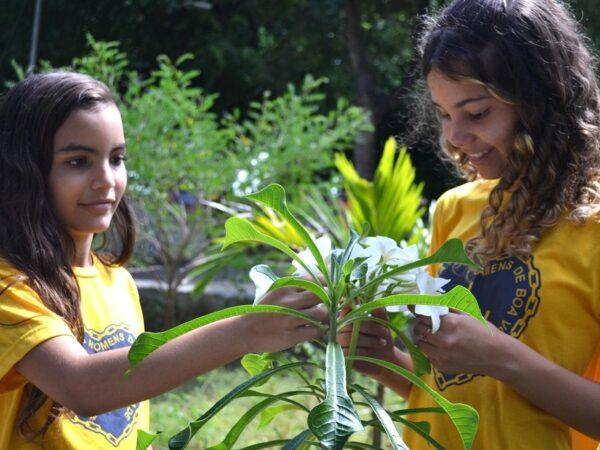 """Dia Mundial do Meio Ambiente: """"A estabilidade do mundo começa no coração da criança"""" (Paiva Netto)"""