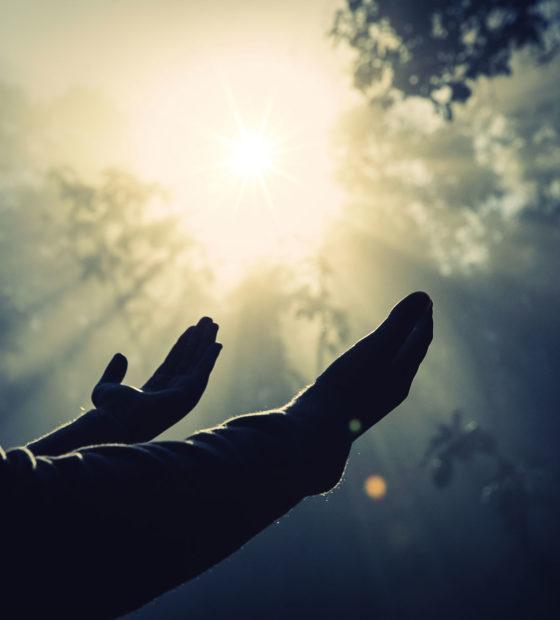 Por que é urgente viver o Amor Fraterno de Jesus?